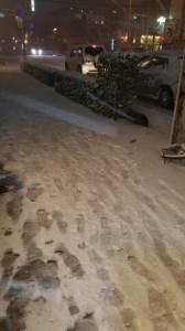 出張先は大雪